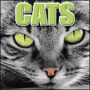 Image pour 'Cats: Sound Effects'