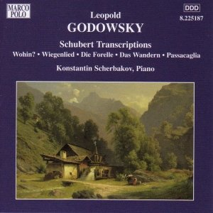 Image for 'GODOWSKY: Schubert Transcriptions'