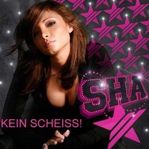 Image for 'Kein Scheiß'