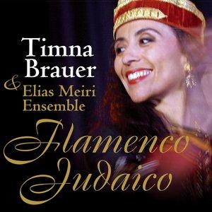 Image for 'Flamenco Judaico'