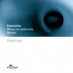 Image for 'Palestrina : Missa pro defunctis [Requiem] : III Offertorium - Domine Jesu Christe'