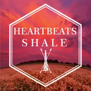 Image for 'Shale (Single 2013)'