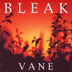 Image for 'Vane'
