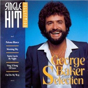 Bild för 'Single Hit Collection'