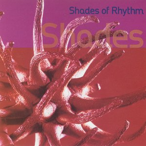 Image for 'Shades Of Rhythm'