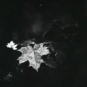 Image for 'Чувствую себя...'