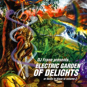 Image pour 'Electric Garden of Delights'
