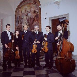 Image for 'Collegium Pro Musica, Stefano Bagliano'