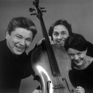 Image for 'Amael Piano Trio'