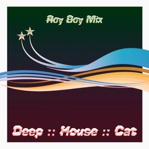 Image for 'December 2008 :: Cut 2 :: Roy Boy Mix'