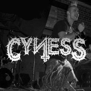 Image for 'Cyness'