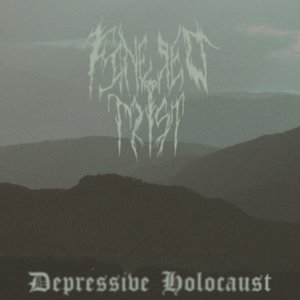 Image for 'Depressive Holocaust'