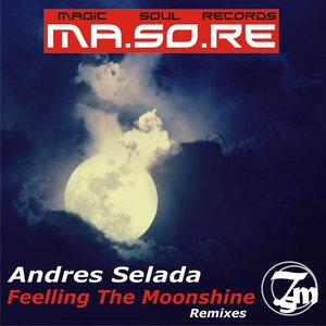 Image for 'Ma.So.Re Feeling the Moonshine Remixes'