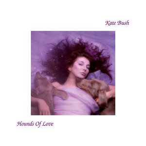 Image for 'Hounds of Love'
