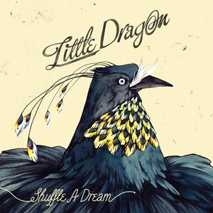 Image for 'Shuffle A Dream'