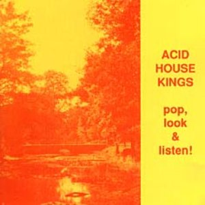 Image for 'Pop, Look and Listen!'