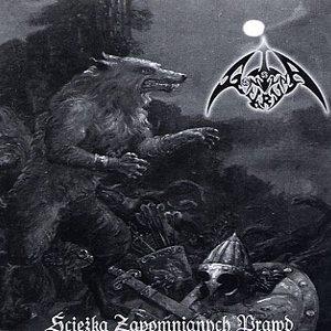 Image for 'Sciezka Zapomnianych Prawd'