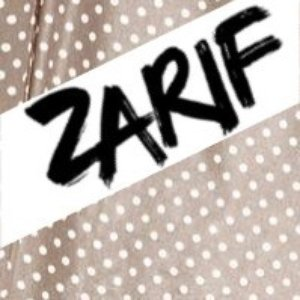 Image for 'Zarif Debut Album Preview'