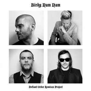 Bild für 'Jaded Future (Pelican Fly Remix)'