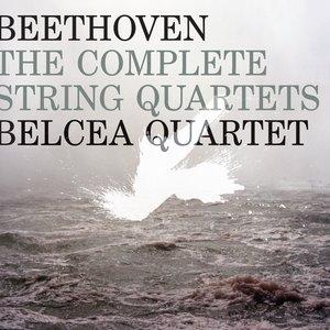 Image for 'III. Menuetto: Allegretto - Trio'