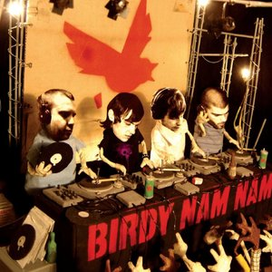 Image for 'Birdy Nam Nam'