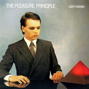 Image for 'The Pleasure Principle'