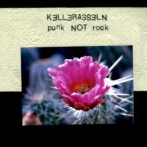 Image for 'Punk not Rock'