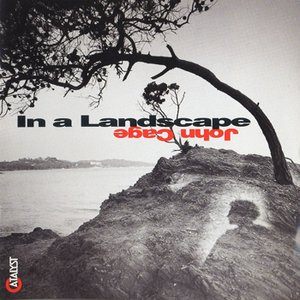 Image for 'In a Landscape'