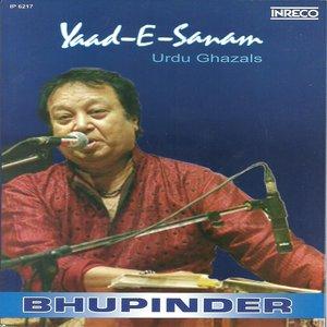 Image for 'Yaad-E-Sanam'