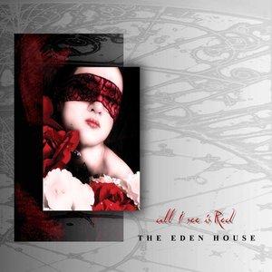 Bild für 'All I See Is Red'