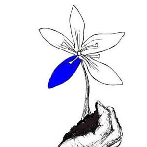 Image for 'Blue Petal'