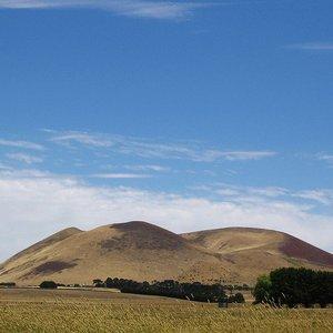 Image for 'Mount Elephant'