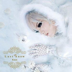 Immagine per 'Last Snow'