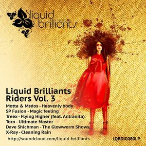 Image for 'Liquid Brilliants Riders Vol. 3'