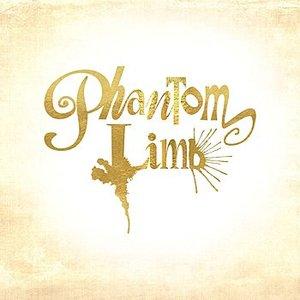 Image for 'Phantom Limb'