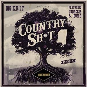 Image for 'Country Sh*t (Remix) (Explicit Version)'