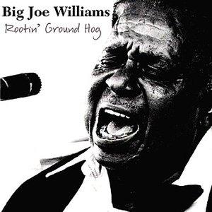 Image for 'Rootin' Ground Hog'