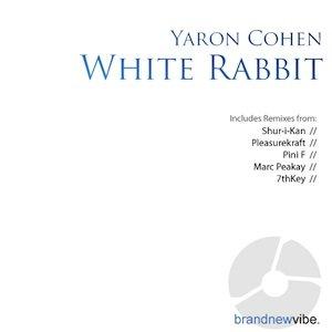 Image for 'Yaron Cohen - White Rabbit'