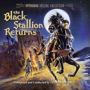 Image for 'The Black Stallion Returns'