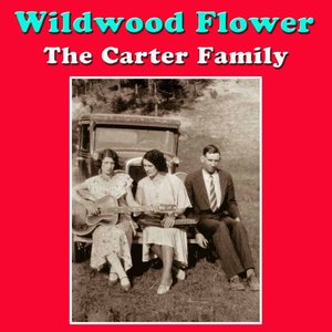 Image for 'Wildwood Flower'