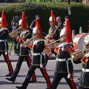 Image for 'The Band Of The Blues And Royals'