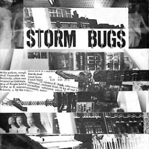 Image for 'Storm Bugs'