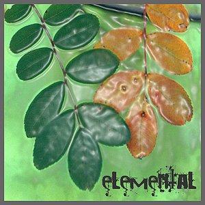 Image for 'Elemental'