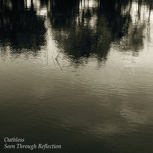 Image for 'Seen Through Reflection'