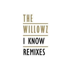 Image for 'I Know Remixes'