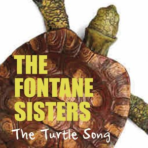 Image for 'The Turtle Song'