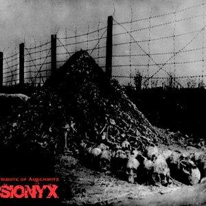 Image for 'rhythm noise RMX - [N.K.72] - Tribute of Auschwitz'
