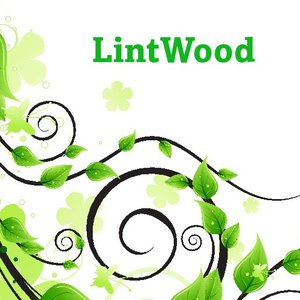 Image for 'LintWood'