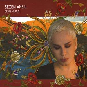 Image for 'Yol Arkadaşım'