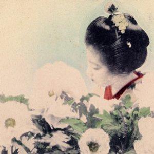 Imagen de 'Silent Flower Observers'